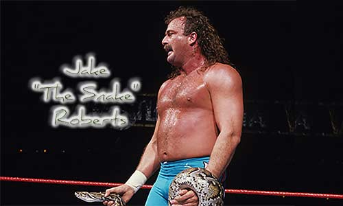 "Jake ""The Snake"" Roberts Talks Wrestling, God & Comedy Tour"
